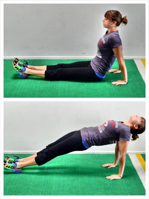 posterior plank